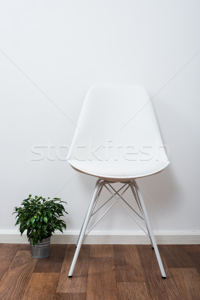 White stylish designer chair and green home plant near the wall Stock photo © manera