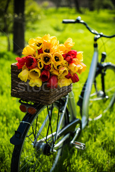 bicycle with flowers Stock photo © manera