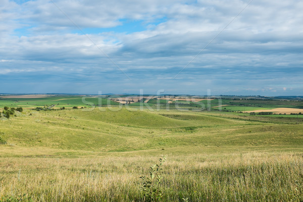 Summer landscape, a spacious field and sky with clouds Stock photo © manera