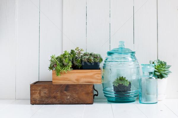 Klasszikus lakberendezés zöld öreg fából készült dobozok Stock fotó © manera