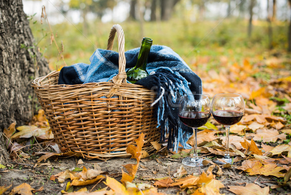 Basket with a blanket, wine and glasses Stock photo © manera