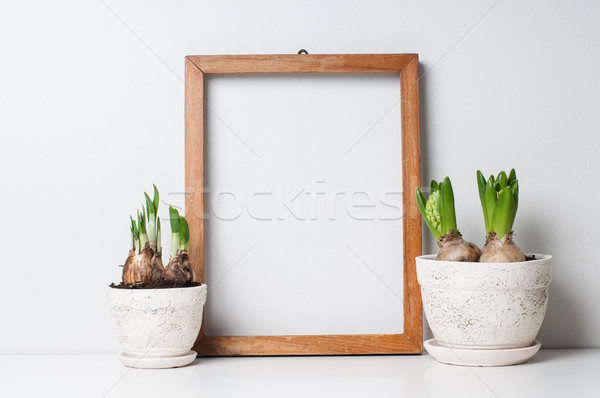 frame and plants Stock photo © manera