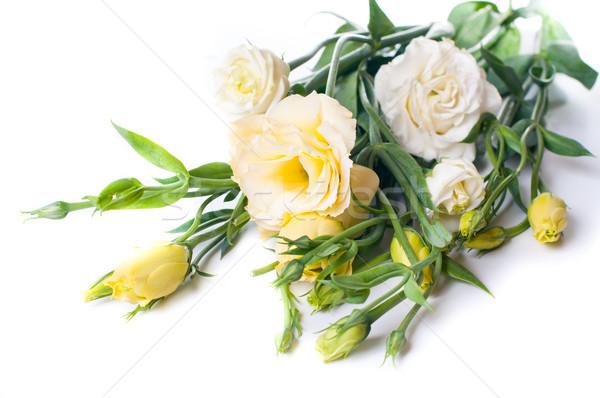 Stock fotó: Virágcsokor · citromsárga · virágok · virág · tavasz · természet