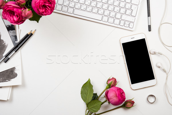 Foto stock: Rosa · flores · blanco · moderna