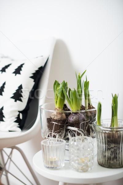 Minimalist mobilya beyaz bahar iç Stok fotoğraf © manera