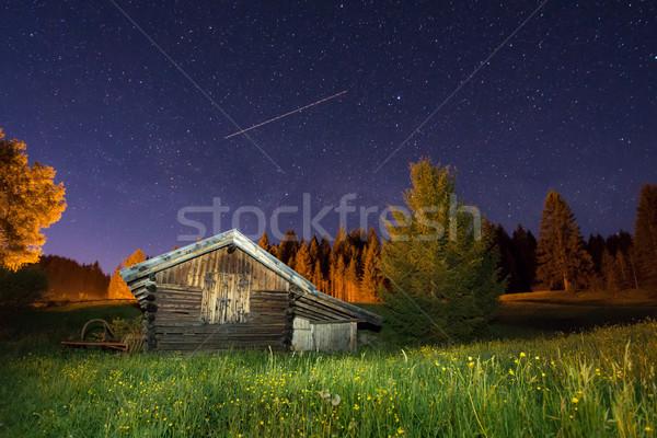 Fából készült csőr csillagos ég égbolt tele csillagok Stock fotó © manfredxy