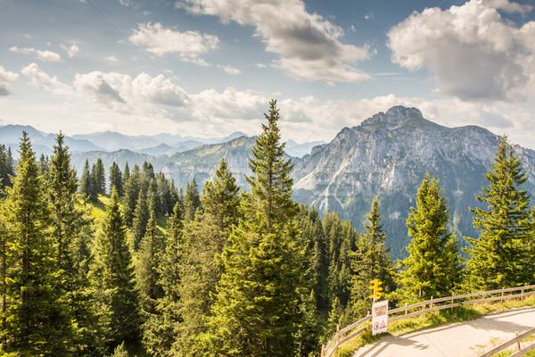 Alpine montagne vue bois forêt Photo stock © manfredxy