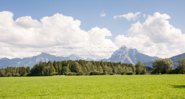 Pasture in Bavaria Stock photo © manfredxy