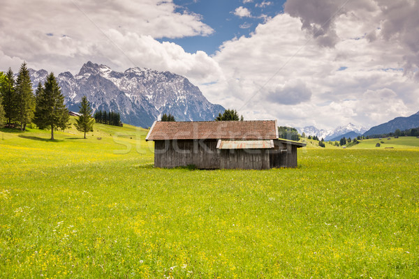 Alpine grange montagne gamme herbe Photo stock © manfredxy