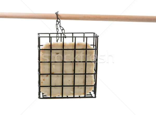 Isolated bird feeder filled with fat Stock photo © manfredxy