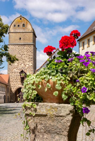 Storico città cancello fiori costruzione architettura Foto d'archivio © manfredxy