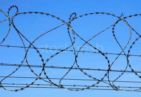 Dikenli tel mavi gökyüzü çit askeri koruma Stok fotoğraf © manfredxy