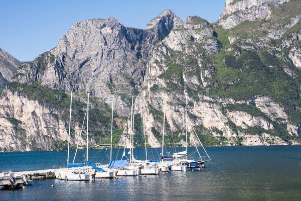 Maina at Lake Garda Stock photo © manfredxy