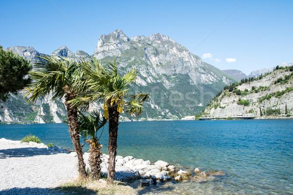 Lago di Garda Beach Stock photo © manfredxy