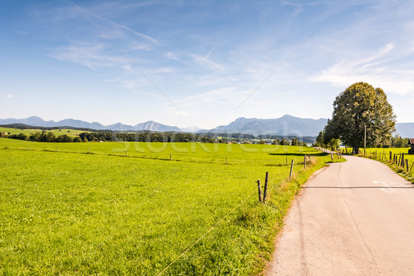 Country road in Bavaria Stock photo © manfredxy