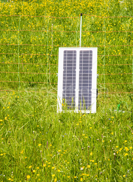 Electric Pastue Fence charged with Photovoltaic Stock photo © manfredxy