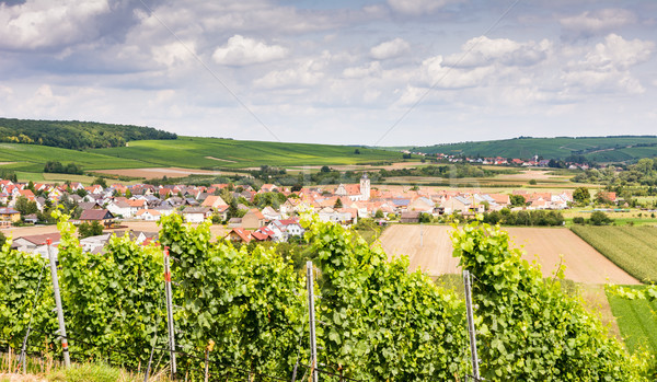Wine-growing district in Franconia Stock photo © manfredxy