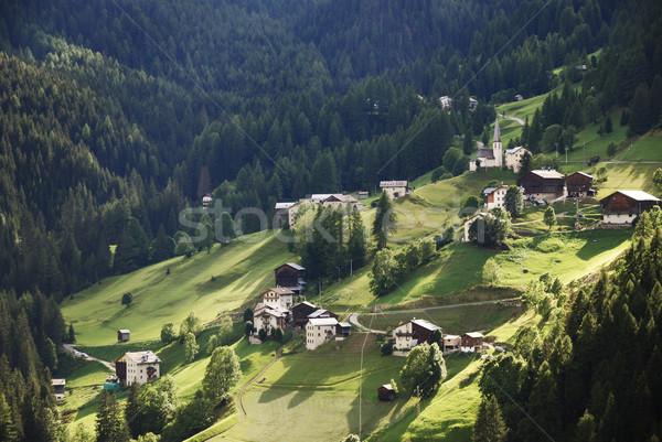 Alpine Farming Village Stock photo © manfredxy
