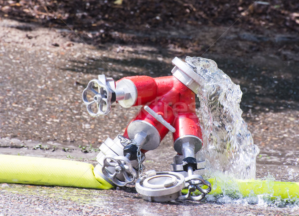 Valve and Firehose Stock photo © manfredxy