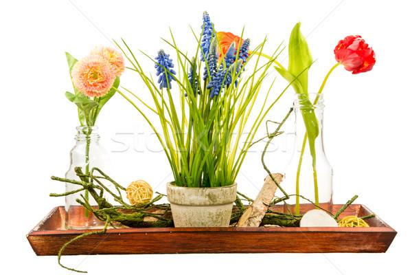 Isolado artificial flor primavera garrafa Foto stock © manfredxy