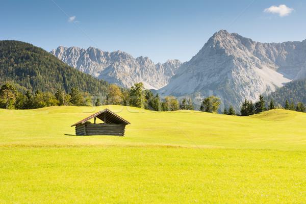 Alpine schuur bergen gras berg vallen Stockfoto © manfredxy