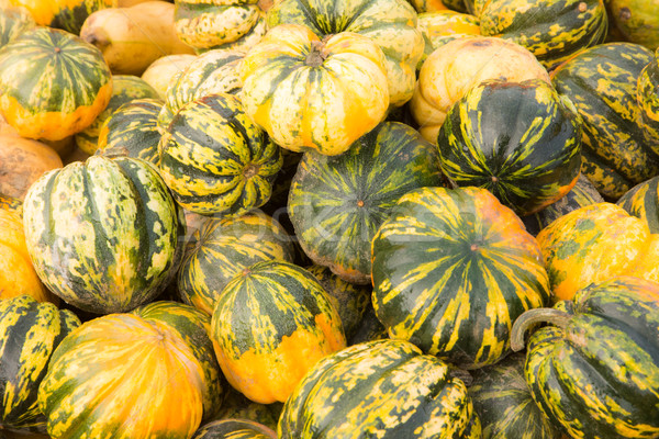 Pile of pumpkins background Stock photo © manfredxy