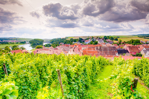 View over a vineyard and the village Wipfeld Stock photo © manfredxy