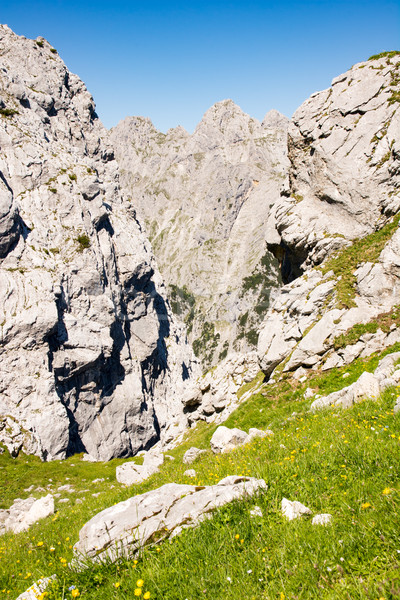 Mountain landscape in the alps of Bavaria Stock photo © manfredxy