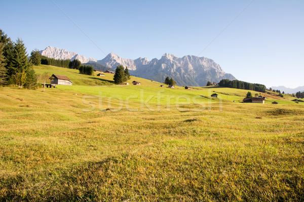 Idilliaco montagna panorama erba foresta Foto d'archivio © manfredxy