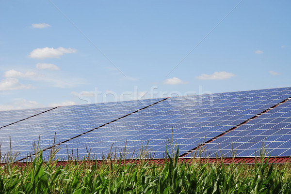 Renewable energy Stock photo © manfredxy