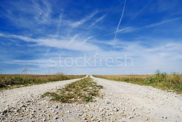 Solitaria sporco brano cielo blu Foto d'archivio © manfredxy