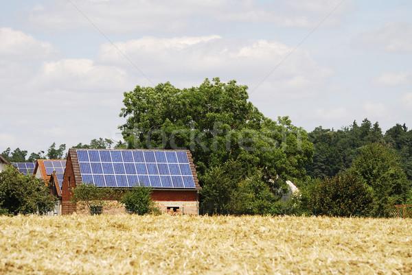 Ecology Stock photo © manfredxy