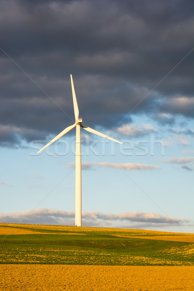Alternatief energie wind macht drie windmolen Stockfoto © manfredxy