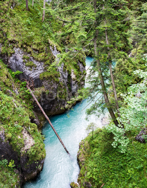 River flowing through the Leutasch Gorge Stock photo © manfredxy
