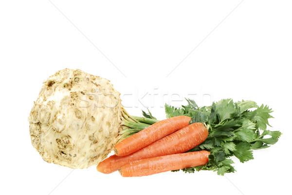 Apio zanahoria aislado saludable raíz hortalizas Foto stock © manfredxy