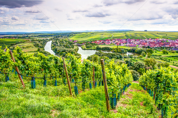 Village of Nordheim in a wine-growing district in Franconia Stock photo © manfredxy