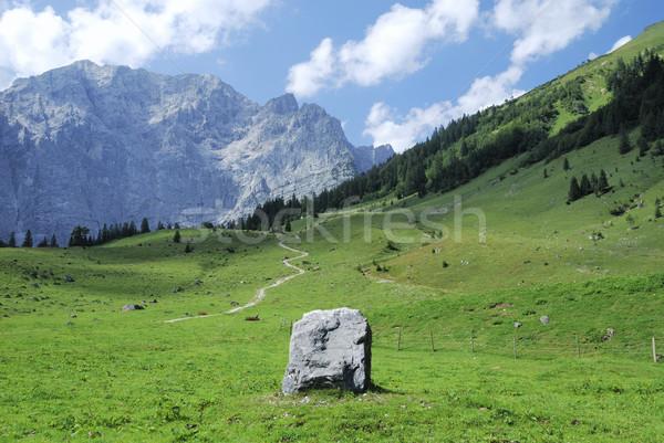 Alpine rock Stock photo © manfredxy