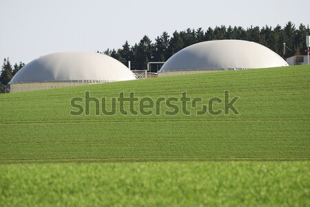 Green bio energy Stock photo © manfredxy