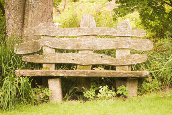 Old weathered wooden park bench Stock photo © manfredxy