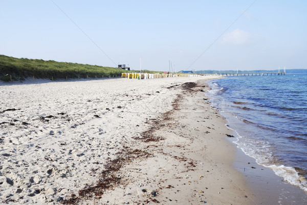 Baltic Sea Stock photo © manfredxy