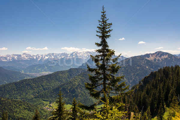 Bavarian mountain landscape Stock photo © manfredxy