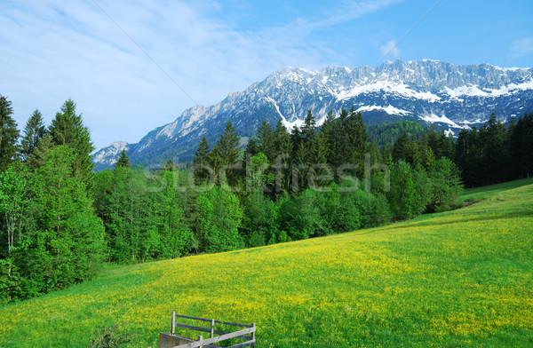 Wilder Kaiser Stock photo © manfredxy