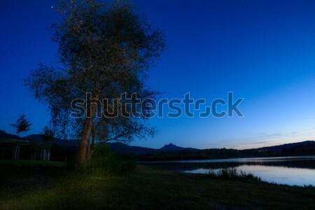 Drzewo górskich sylwetki noc jezioro wygaśnięcia Zdjęcia stock © manfredxy
