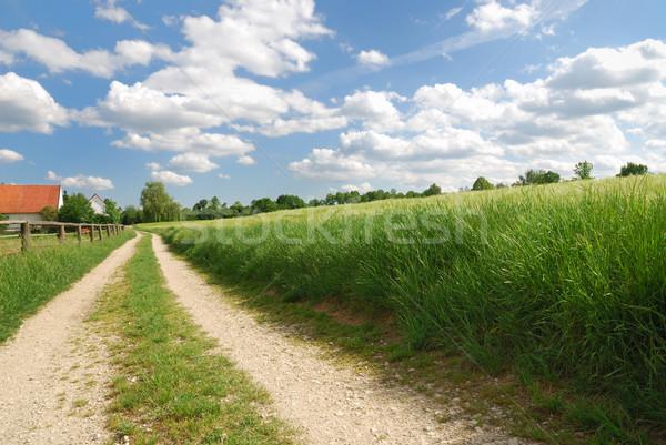 Countryside Stock photo © manfredxy
