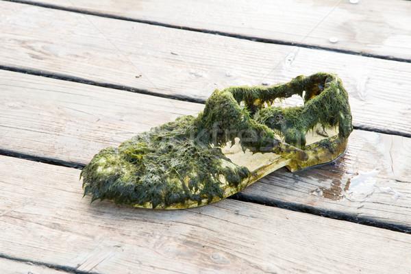 Oude schoen vol nat Stockfoto © manfredxy