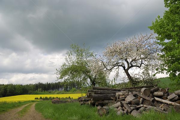 Kötü hava manzara fırtına bulut yol Stok fotoğraf © manfredxy