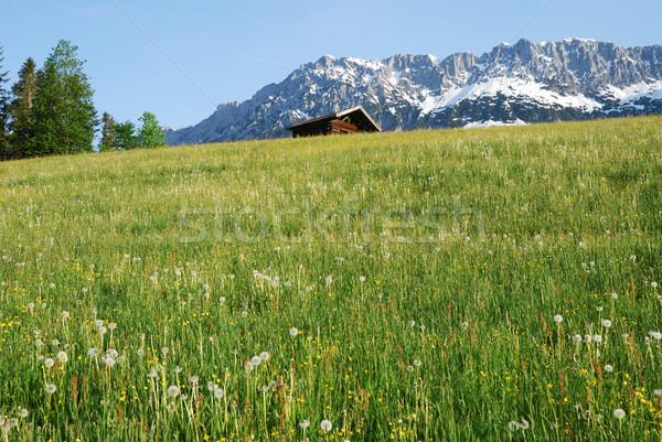 Stok fotoğraf: Alpler · Avusturya · dağ · manzara · bölge · yaz