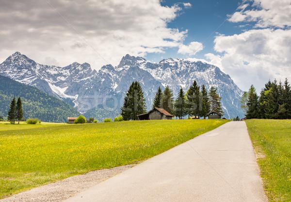 Vidéki út hegyek Alpok fa fű út Stock fotó © manfredxy