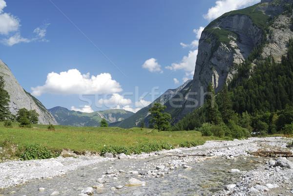 Mountain torrent Stock photo © manfredxy