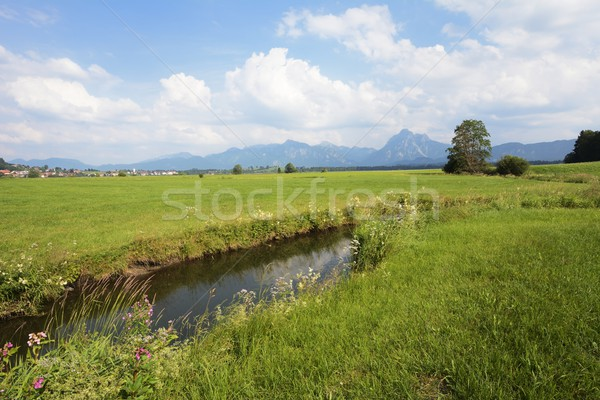 Brook in Bavaria Stock photo © manfredxy